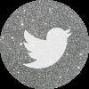 tumblr-silver-round-social-media-icon