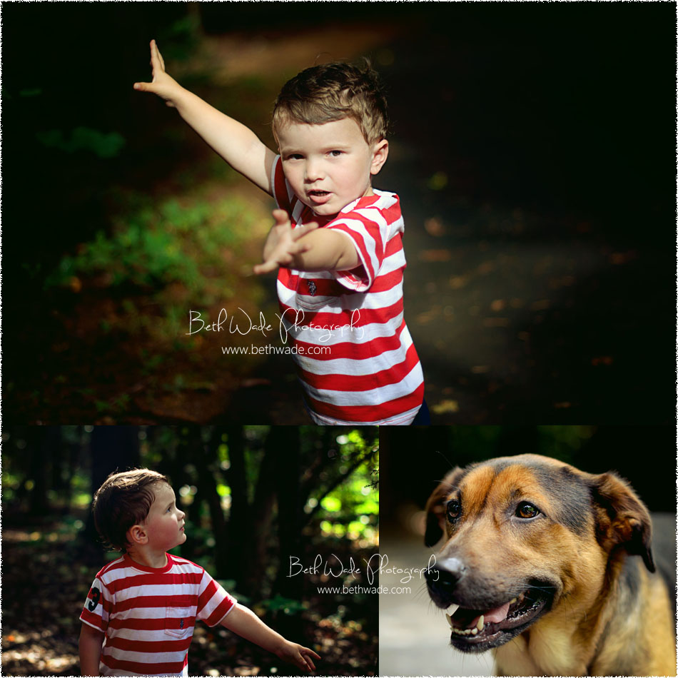 south charlotte family photographer - mcdowell park