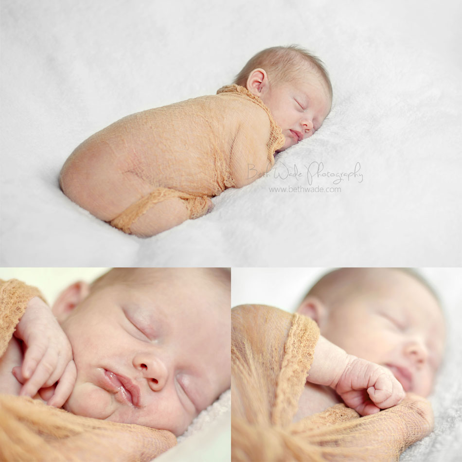 10 day old newborn - charlotte baby photographer