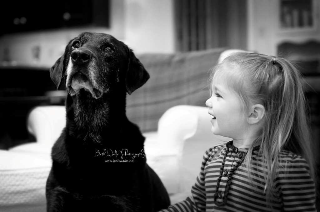 puppy love - charlotte pet photographer