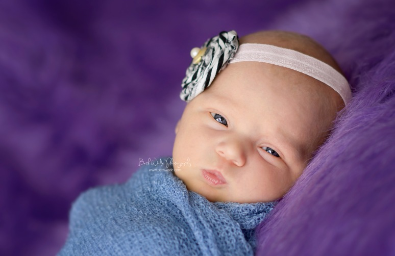 12 day old baby girl - charlotte newborn photographer