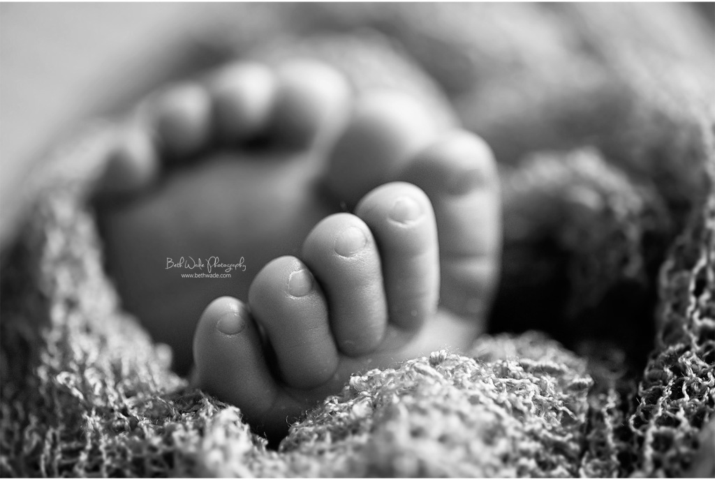 precious 12 days new baby boy {charlotte newborn photographer}