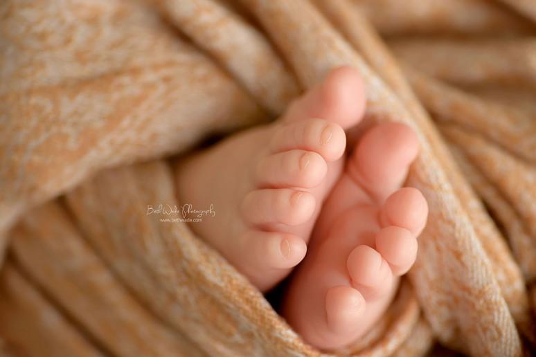 19 day old baby boy {charlotte newborn photographer}