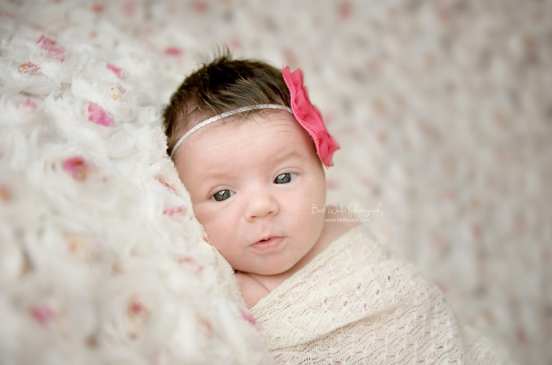 12 day old baby girl ~ family of 3 {charlotte newborn photographer}