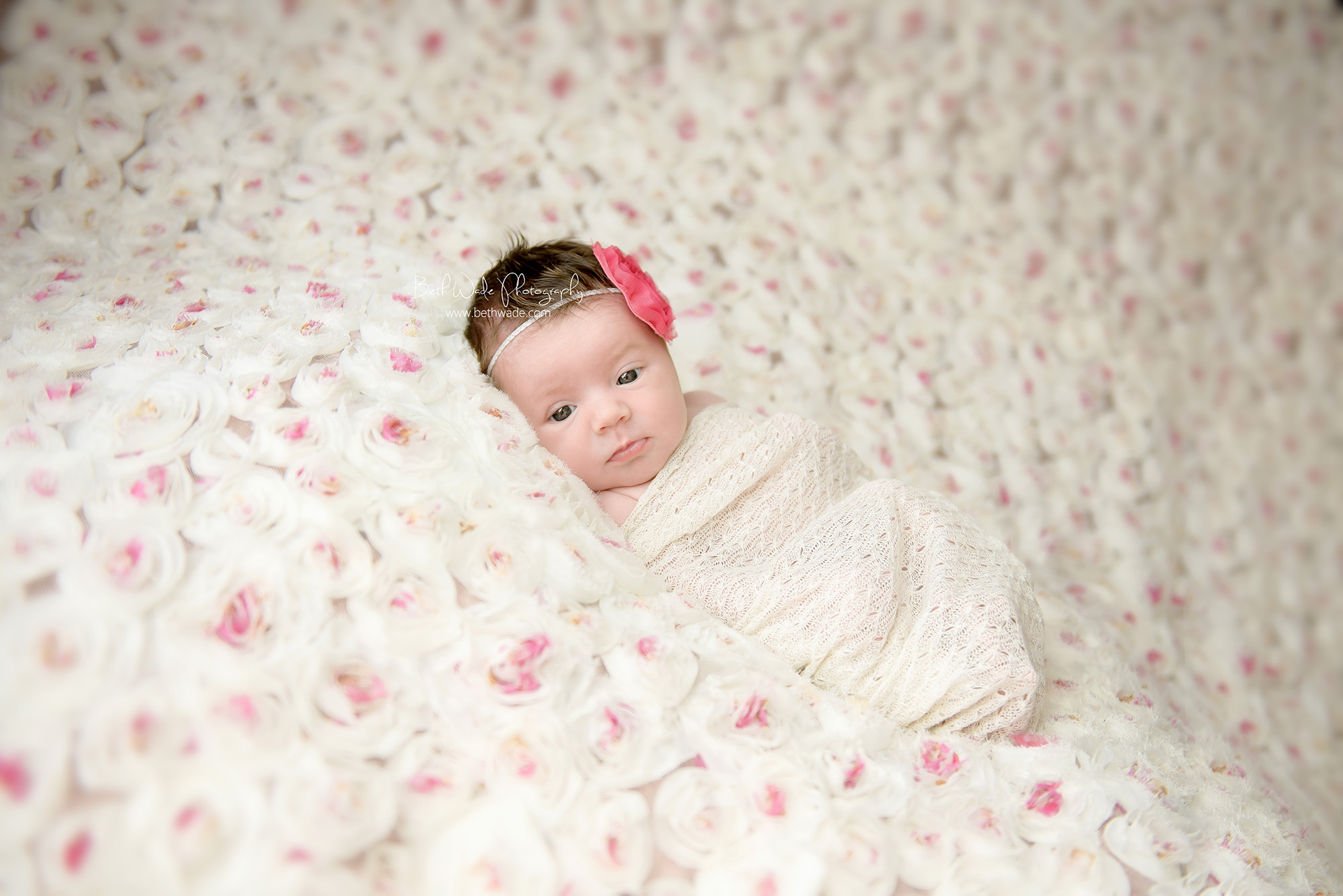 12 days new baby girl ~ family of 3 {charlotte newborn photographer}
