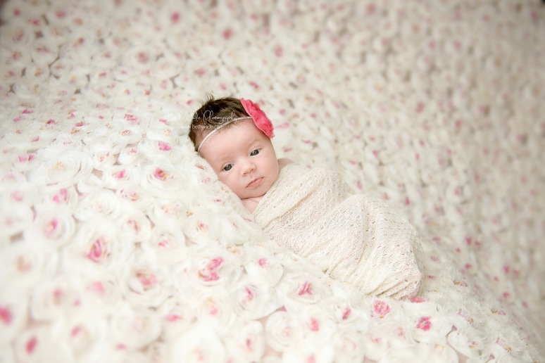 12 days new baby girl ~ family of 3 {charlotte newborn photographer}