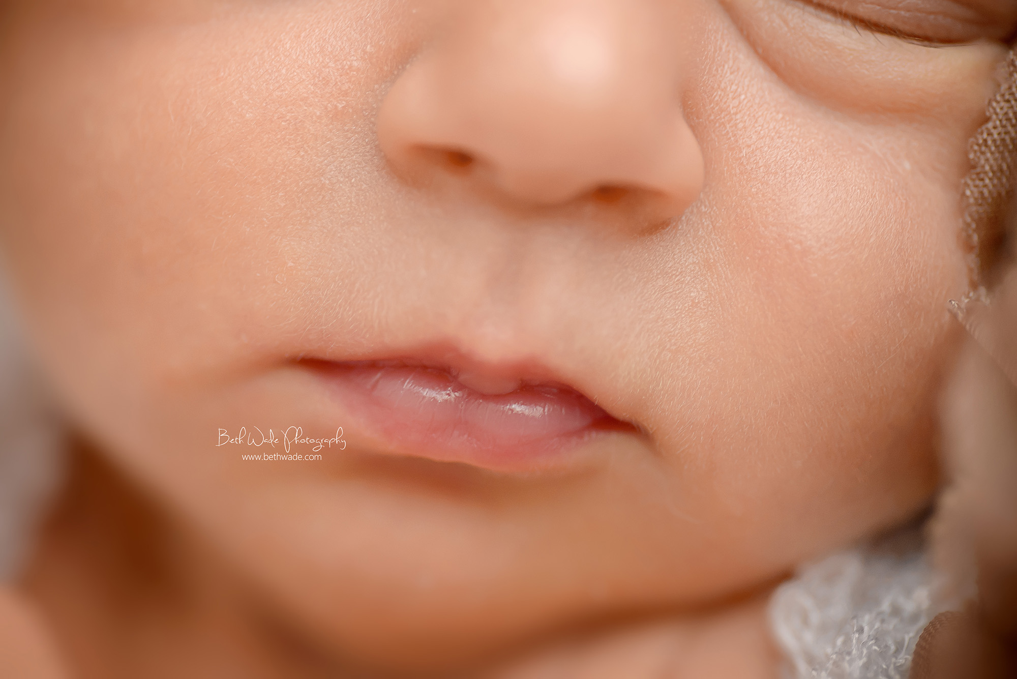 2 weeks new baby girl ~ family of 3 {charlotte newborn photographer}