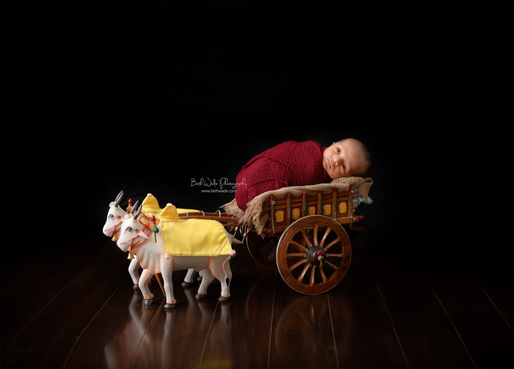 14 days old baby boy ~ family of 3 {charlotte newborn photographer}