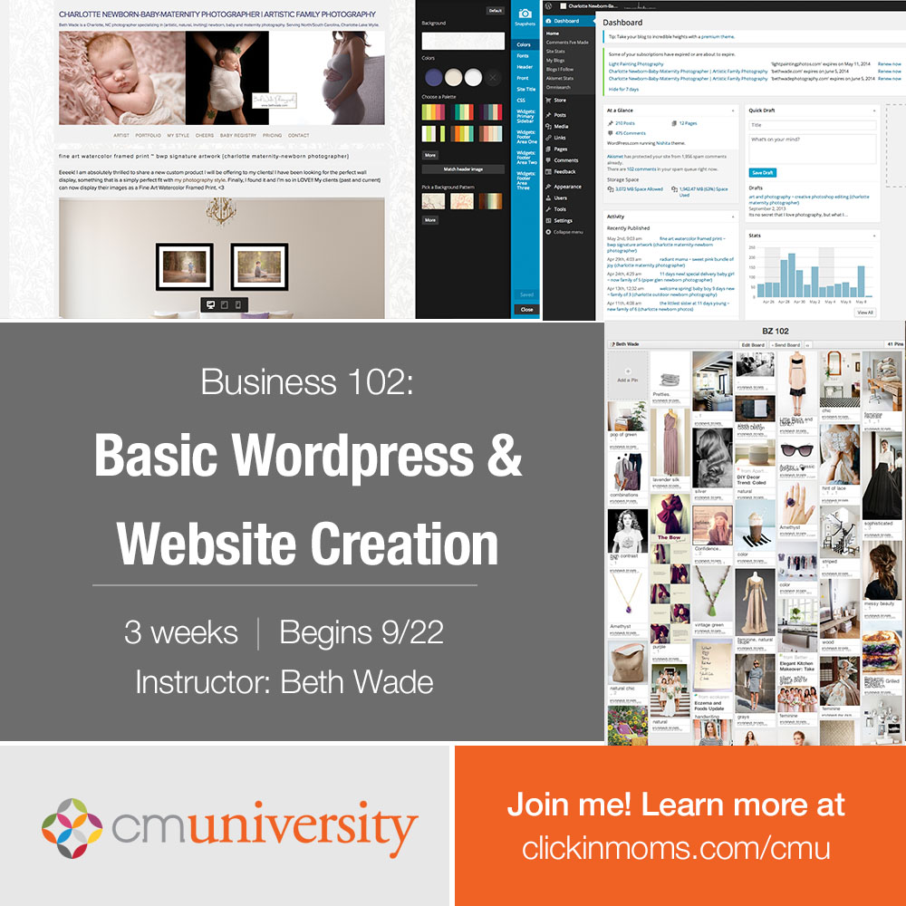 business 102: basic wordpress and website creation