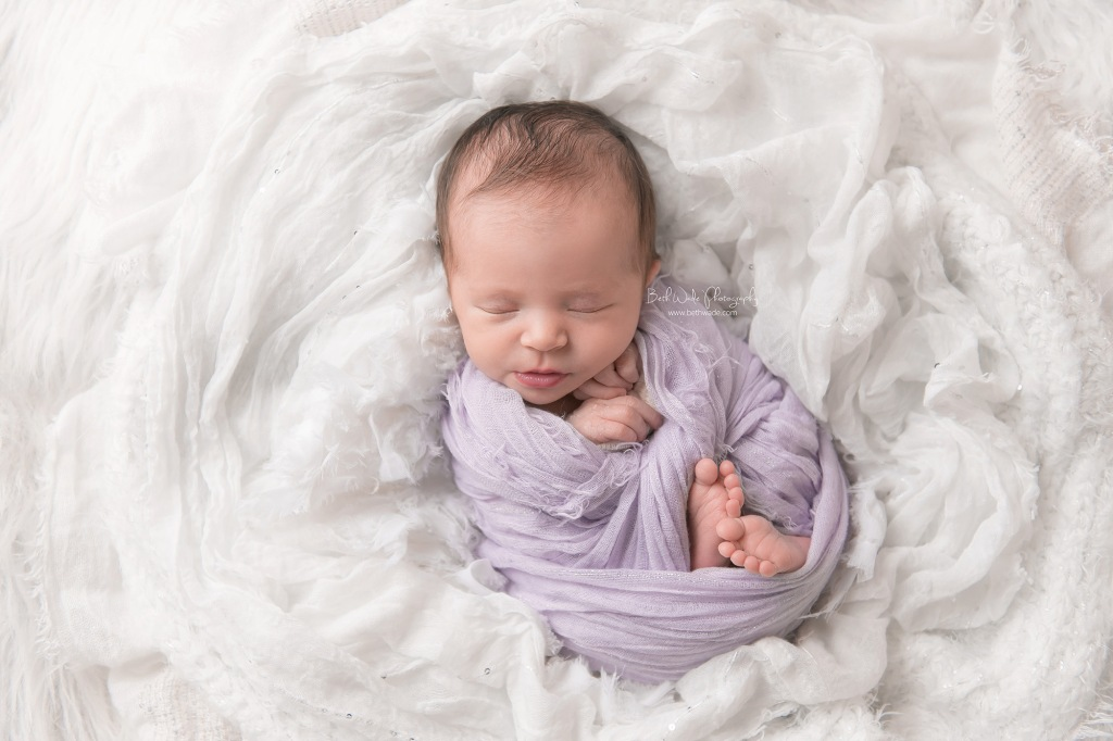 holiday baby girl {belmont new born photographer}